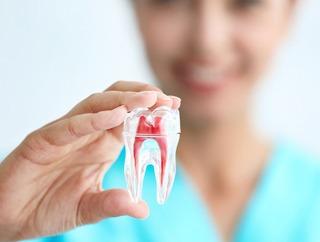 Contemporary Endodontics | Houston Endodontist | Pulpotomy